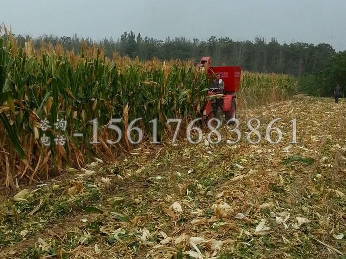 小型玉米收獲機器